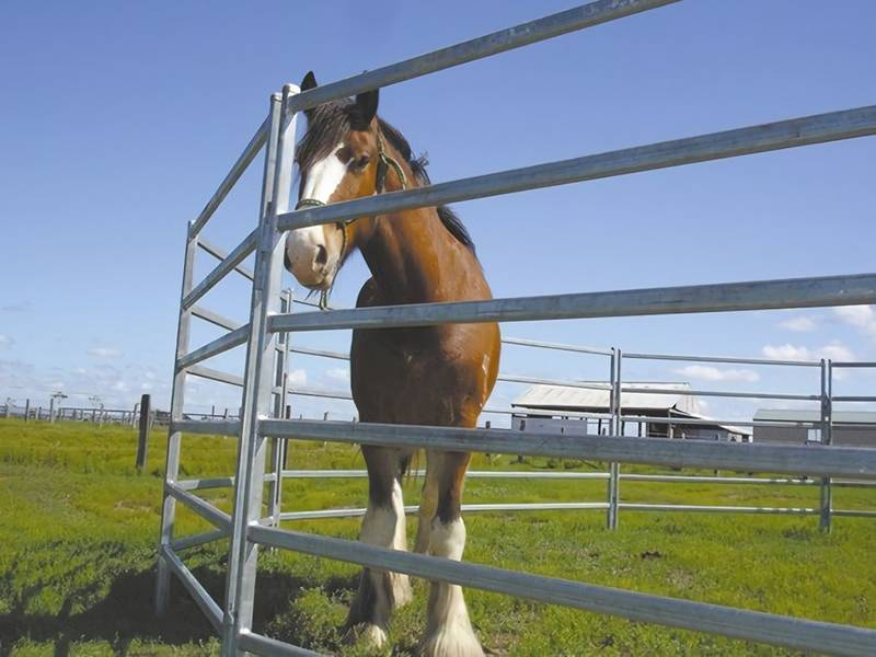 Corral Panels - Temporary Livestock Fencing of Horses, Cattle & Sheep