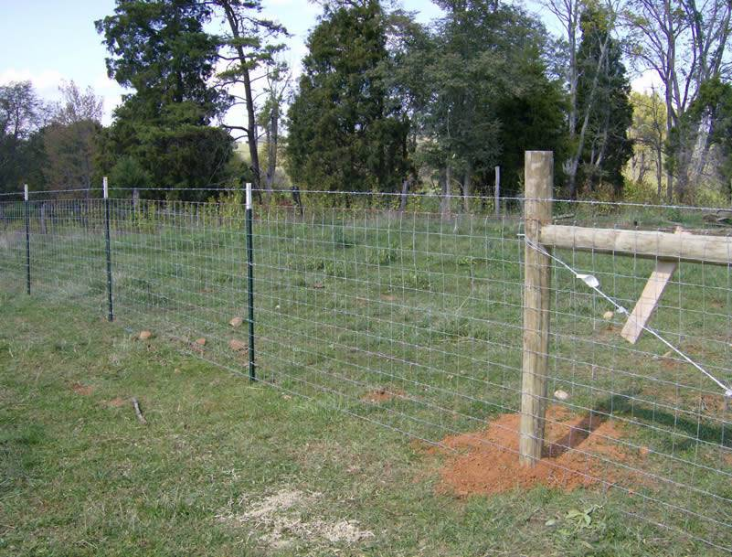 Farm Fence Brilliant Fixed Knot Field Are Installed In The Outdoor