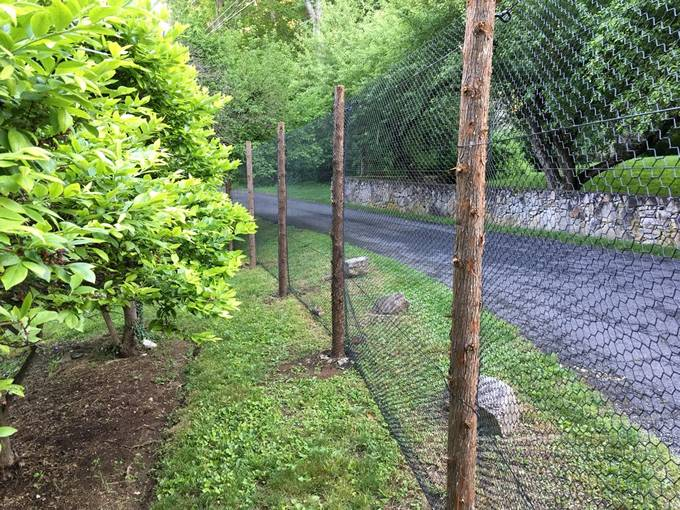 Steel Hexagonal Wire Deer Fence – Best Deer Fencing in Different Height