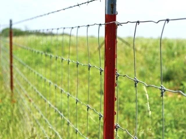 Studded T Posts - Light to Heavy Duty Farm & Agriculture Fence