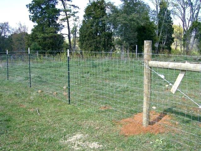 Studded T Posts Light To Heavy Duty Farm Amp Agriculture Fence